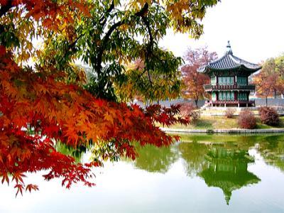 ทัวร์เกาหลี ทัวร์เกาหลีราคาถูก ทัวร์ฮ่องกง ทัวร์จีน ทัวร์ญี่ปุ่น ติดต่อ MerryBrightTravel 086-0649589