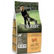 จำหน่ายอาหารสุนัข Pronature Holistic พร้อมบริการจัดส่งสินค้าทั่วประเทศไทย